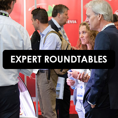 Expert Roundtables